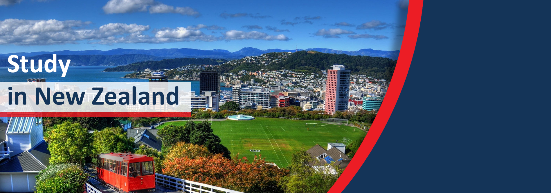 Study in New Zealand, Study in Auckland University, New Zealand Study Consultant Faridabad